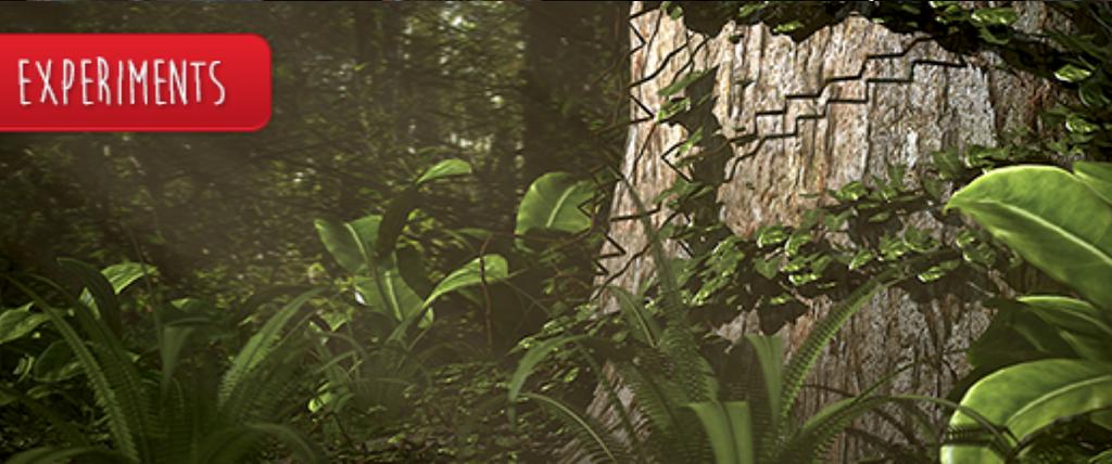 Blender – Forest Scene
